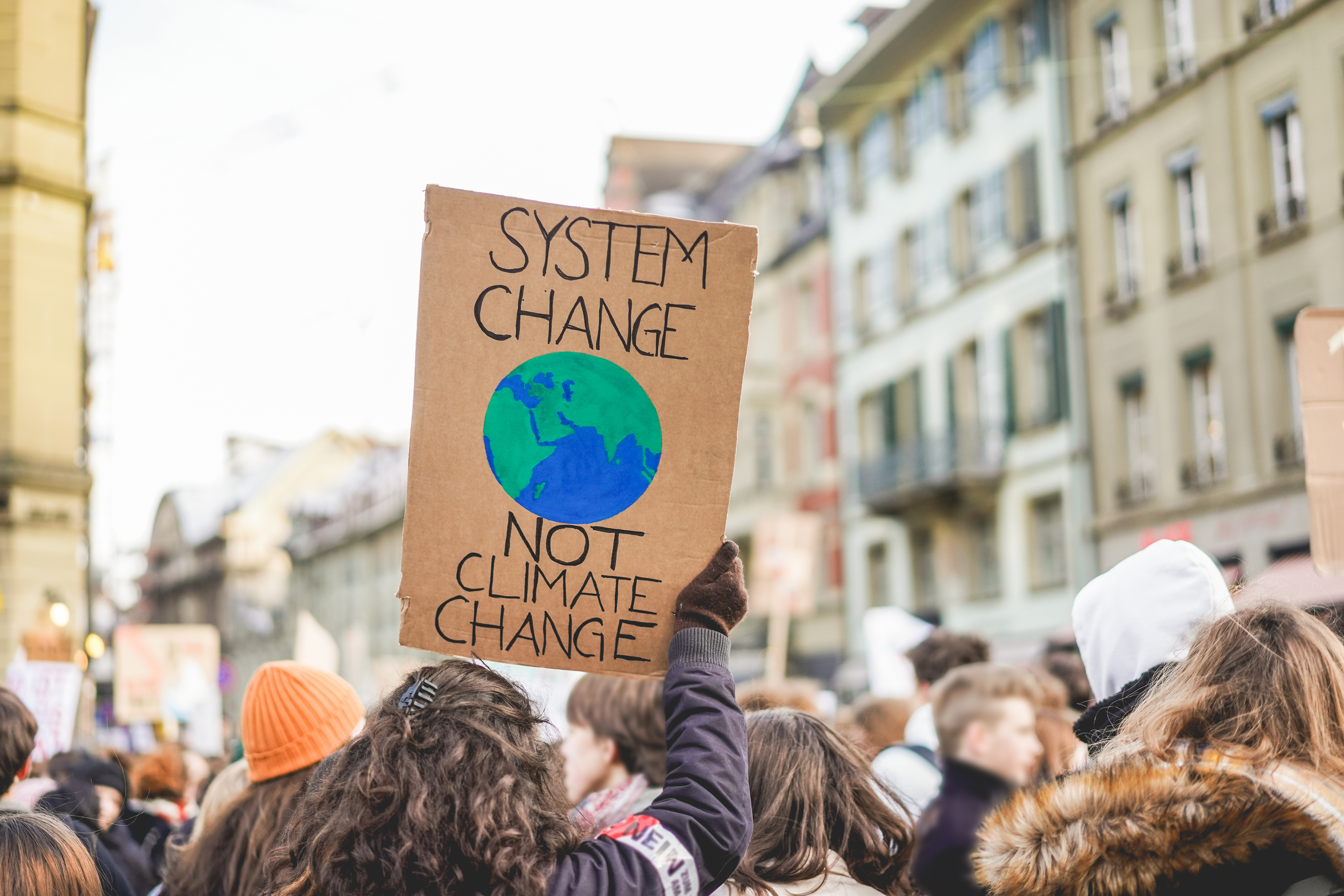 Climate demonstration with system change placard