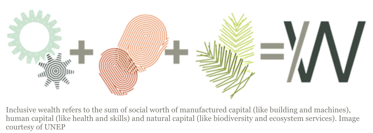 Inclusive wealth refers to the sum of social worth of manufactured capital (like building and machines), human capital (like health and skills) and natural capital (like biodiversity and ecosystem services). Image courtesy of UNEP