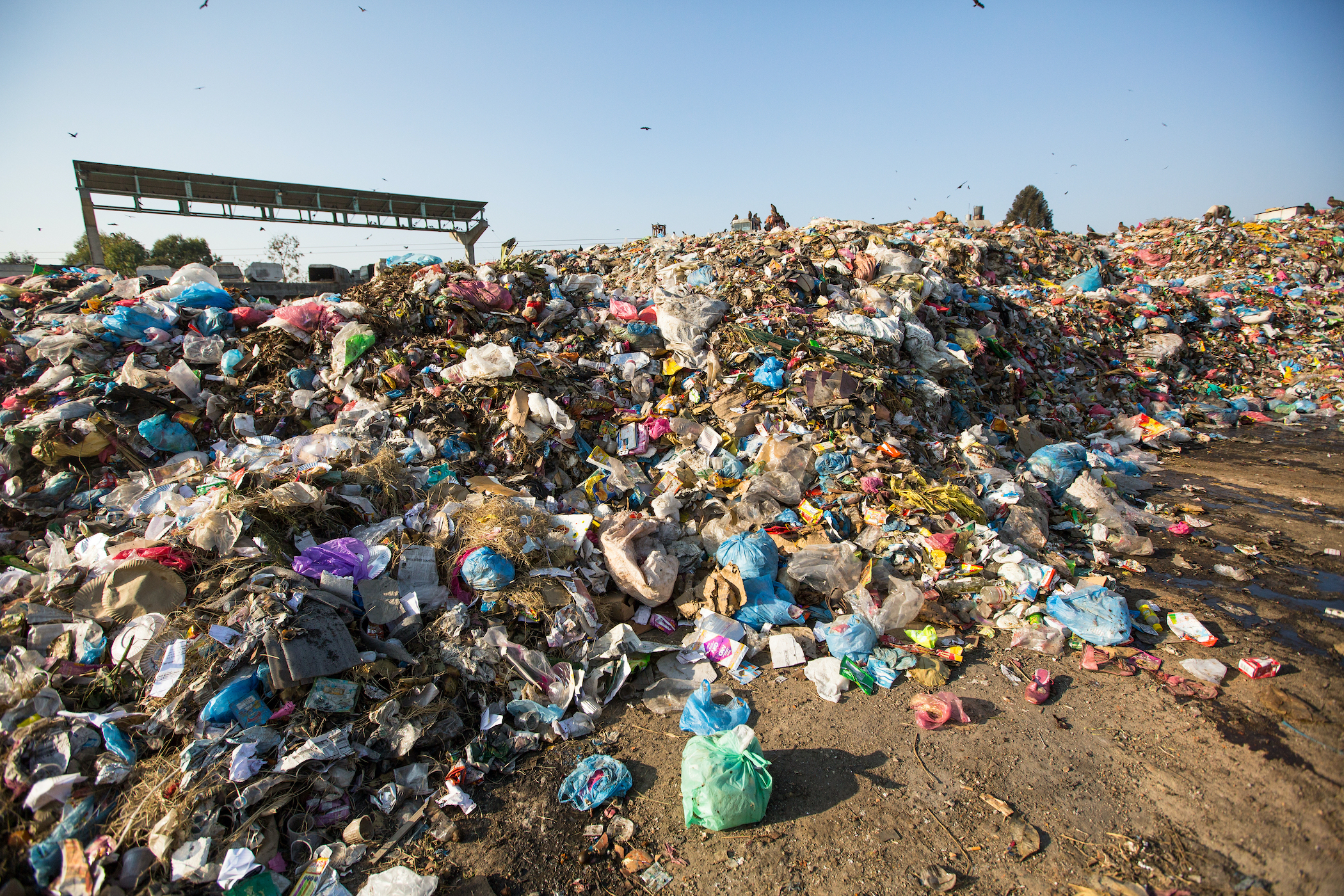 Food in a landfill