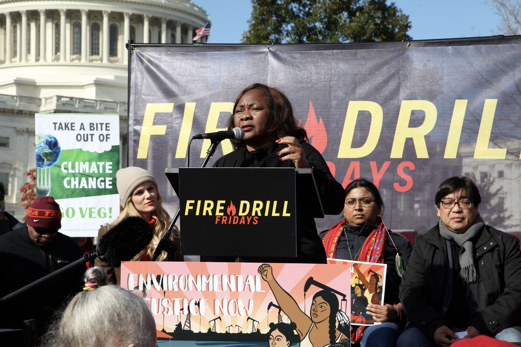 Catherine Coleman Flowers speaks at Fire Drill Friday protest in Washington, D.C.