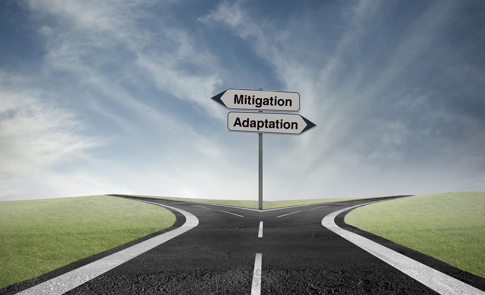 Mitigation-Adaptation Crossroads