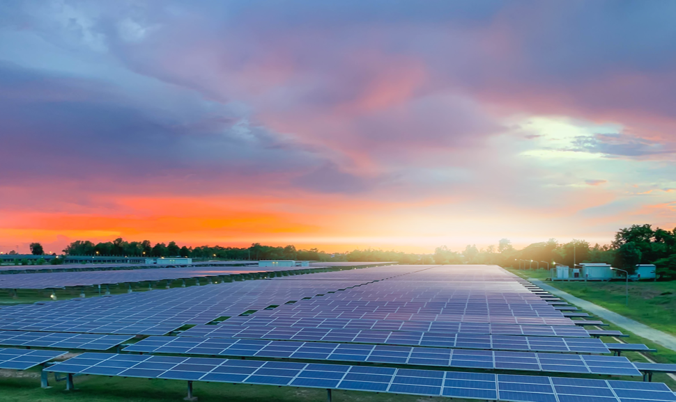 Rows of PV modules. Sunset can be seen in the background.