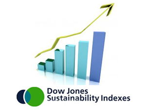 Dow Jones Sustainability Index Adds Morgan Stanley, Cuts Shell | Greenbiz