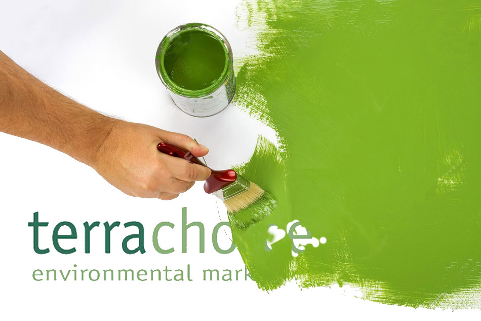 Is TerraChoice Greenwashing? featured image