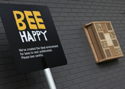 New bee hotels at Sainsbury's stores