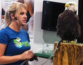 Trainer Meghan Woodworth and Koho the bald eagle.