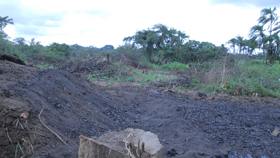 Charcoal production site in the forested region of the Nwoya district in Uganda, East Africa.
