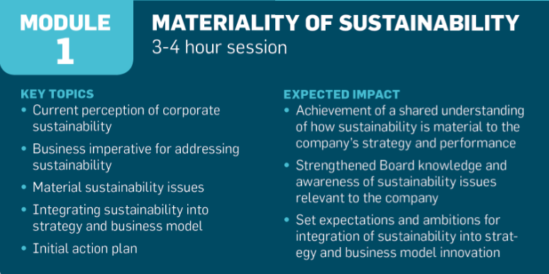 UN Global Compact sustainability and boards of directors