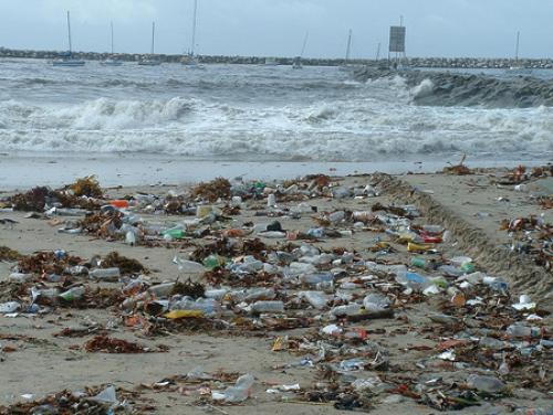 plastic waste essay