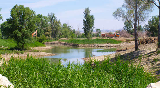 water management projects along the Arga River in Spain