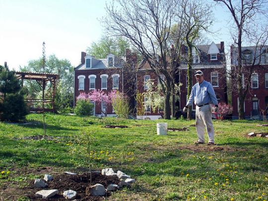 A community garden in St. Louis, courtesy of ONSL Restoration Group.