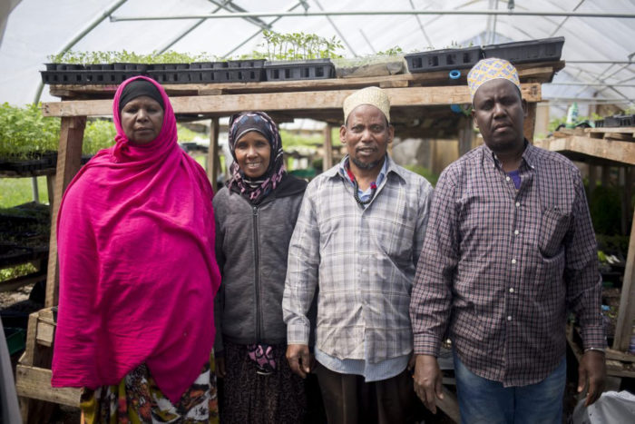 from left, Seynab Ali, Batula Ismail, Jabril Abdi and Mohammed Abukar. (Photo courtesy of New Roots)