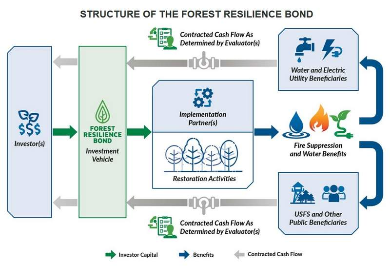 A flow chart of the Forest Resilience Bond financing plan