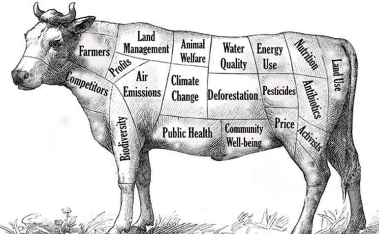 Can The Beef Industry Collaborate Its Way To Sustainability