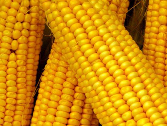 corn-based ethanol