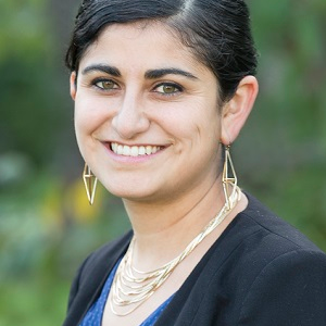 Sonia Aggarwal, Energy Innovation