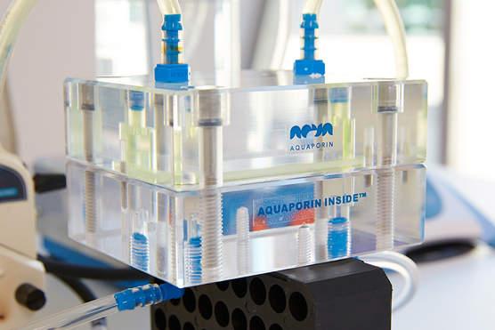 Aquaporin Inside