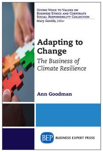 Adapting to Change book cover