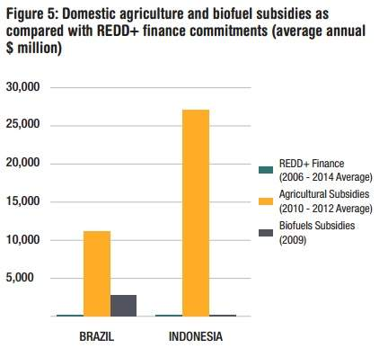 Inforgraphic of agricultural and biofuel subsidies vs. REDD+ committments