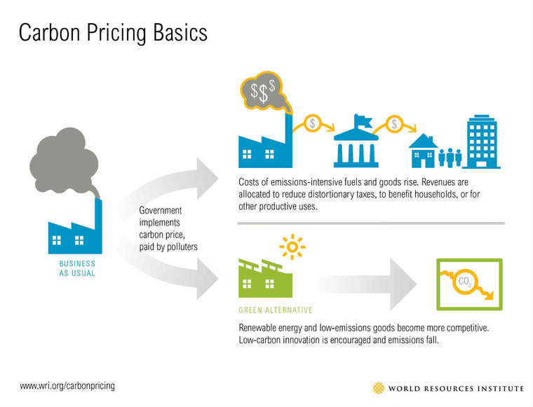 carbon pricing basics