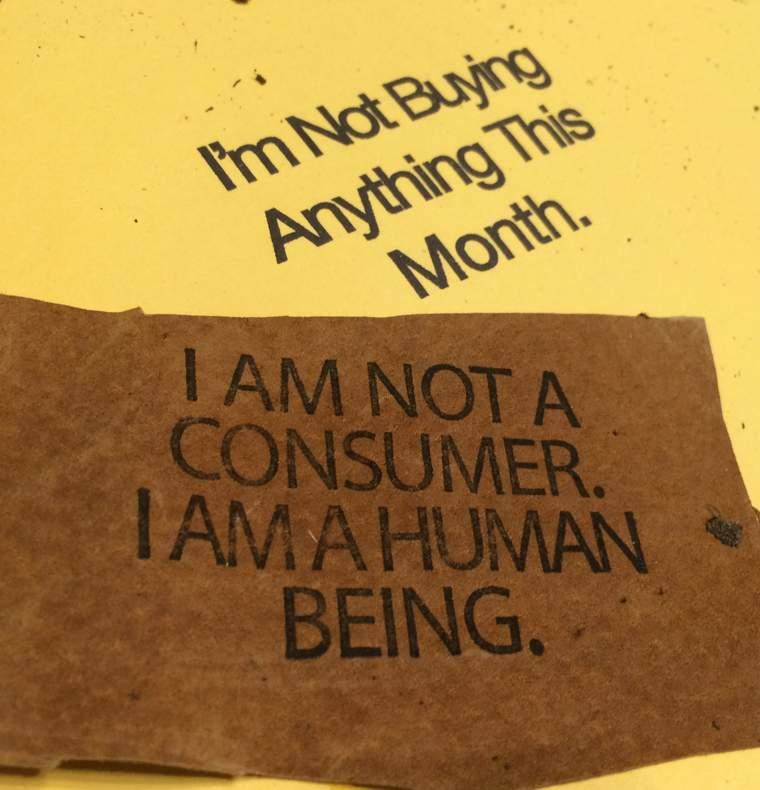 anti-consumerism patagonia yerdle