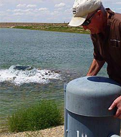 groundwater Basins