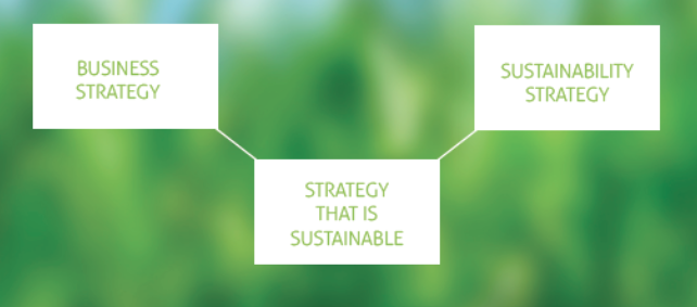 sustainable business strategy purpose