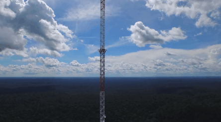 View of the Amazon Tall Tower Observatory, the tallest structure in South America