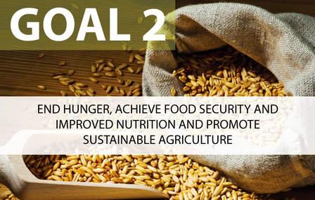 SDG 2: End hunger