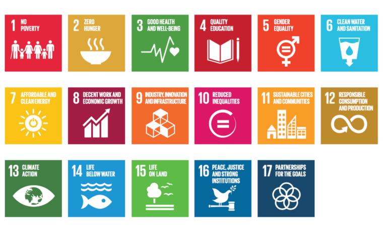 The 17 UN SDGs