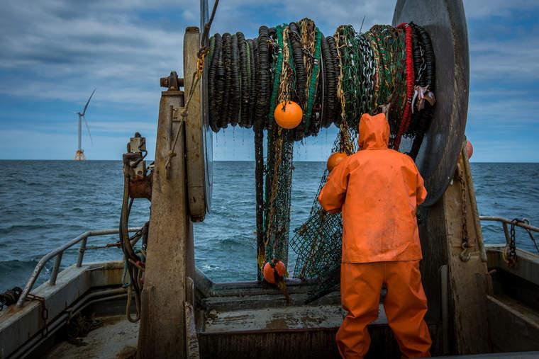 Fishermen using video monitoring