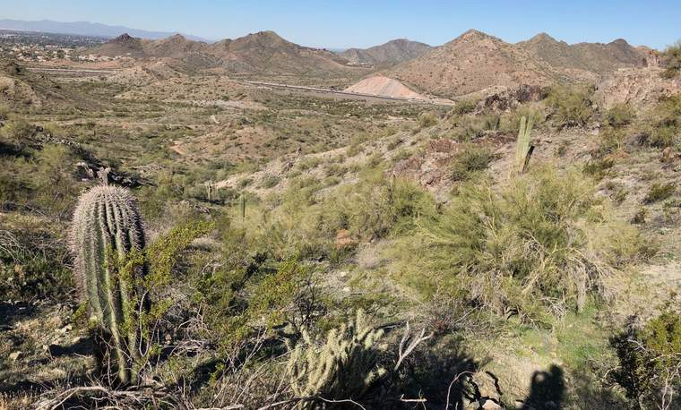 Sonoran Desert, GreenBiz 20