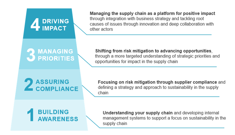 The BSR Supply Chain Leadership Ladder