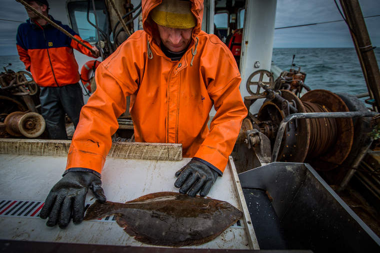Fisherman Dean West measures fluke in view of the electronic monitoring cameras