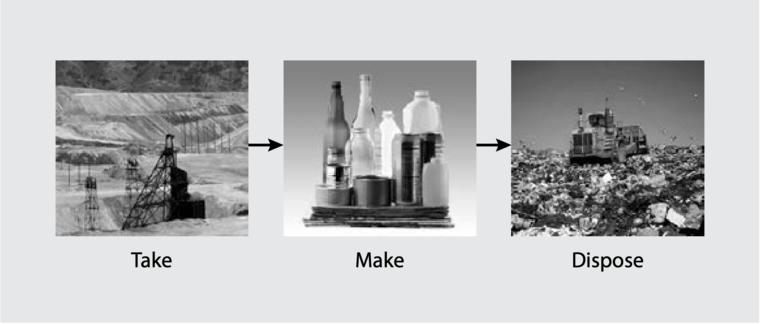 Take, make, waste linear model