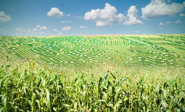 L'enjeu de la donnée agricole