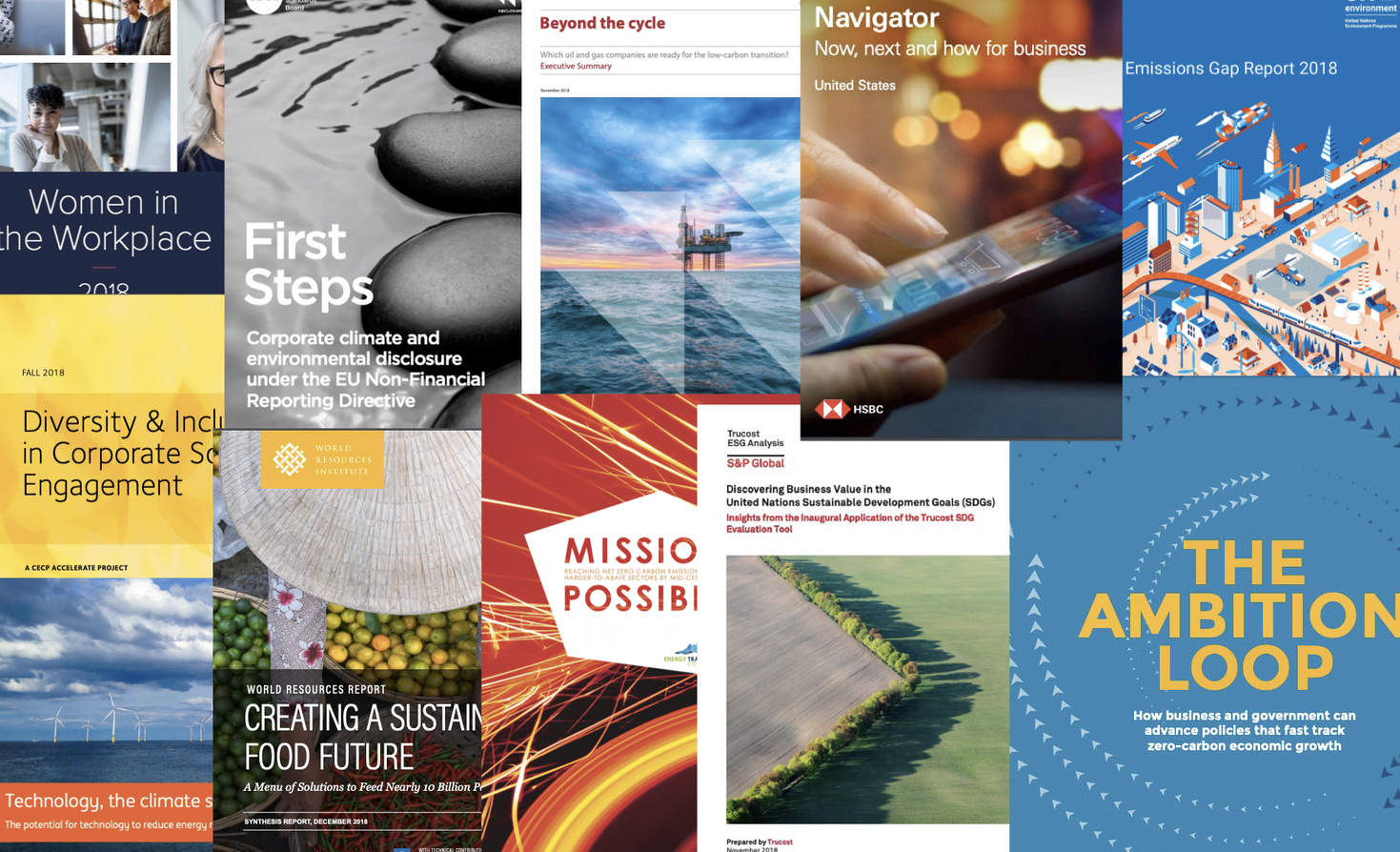 Report Report: Diversity, Disclosure, CDP and the SDGs