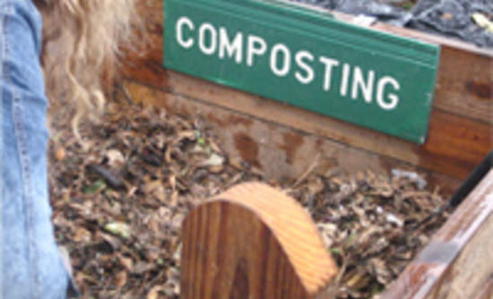 Bioplastics Proven to Break Down in Home Composting Systems | GreenBiz