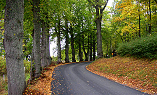 importance of good roads in a A major constraint with developing and maintaining rural roads is the fact that they are, unfortunately, rural the areas where they are needed are often difficult to access, logistics become complicated, local contracting capability is limited, engineers are few and far between, and younger engineers especially, are not keen to leave the urban environment.
