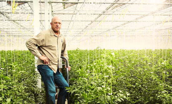 One grower's $17 million quest for a greener tomato | GreenBiz