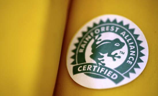 Rainforest Alliance Banana