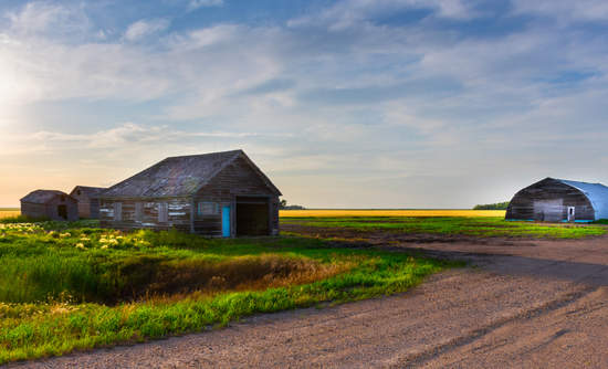 Abandoned farm site and prairie in Canada's Manitoba province.