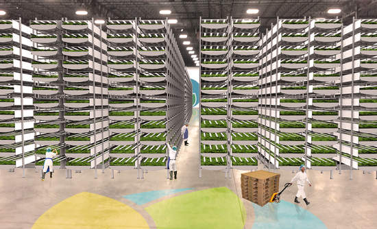 AeroFarms association for vertical farm