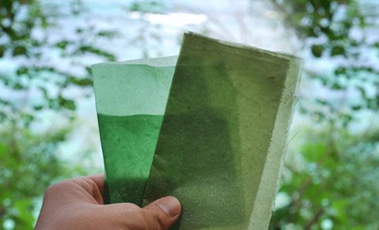 4a49b239b5 This edible packaging will make you reconsider seaweed   GreenBiz