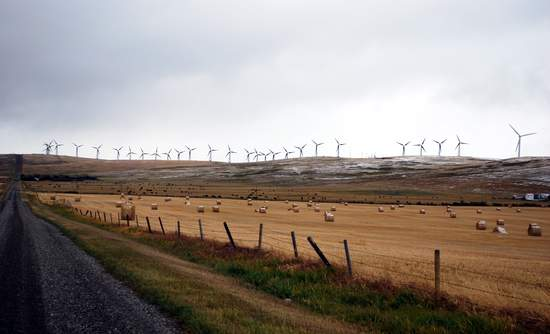 Wind turbines over a field