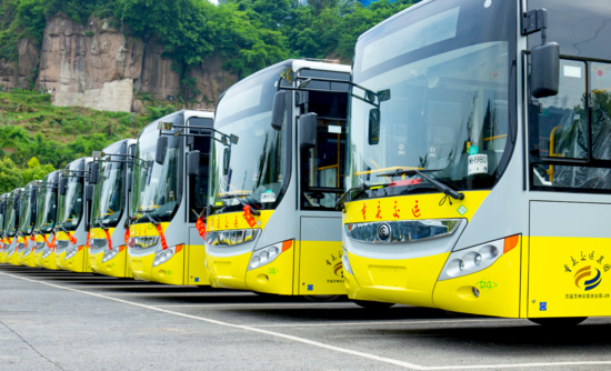electric buses in a row