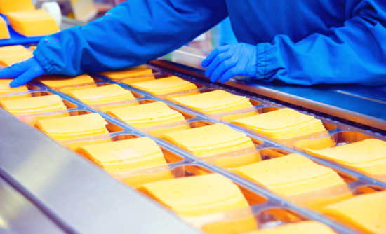 cheese production in a factory