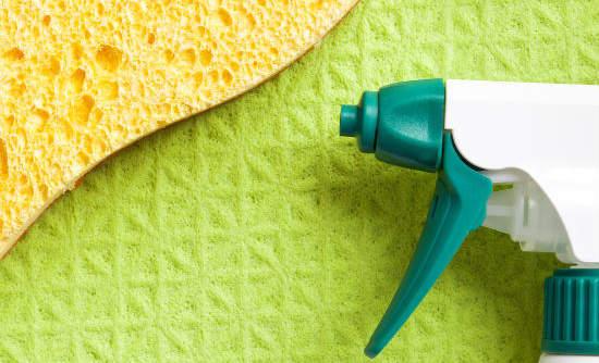 Cleaning Supplies Photo By Markus Gann Via Shutterstock