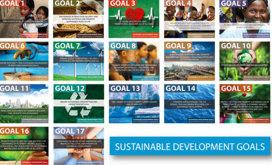 Corporate Citizenship graphic of the 17 Sustainable Development Goals