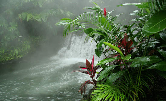 Costa Rica renewable energy geothermal